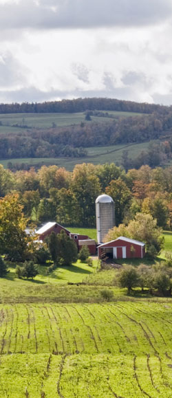 New York farm and farmland