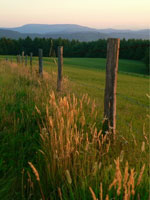 North Carolina farm with mountain and fence