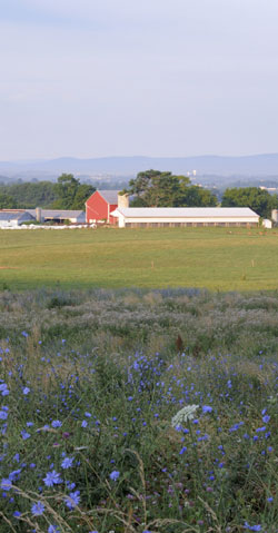 Red barn and farm field